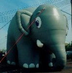 Elephant balloons - giant 20ft. tall elephant shape cold-air advertising inflatables available for sale and rent.